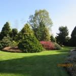 Arboretum avril 2015 (10)