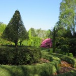 Arboretum avril 2015 (17)